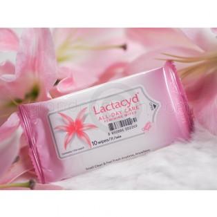 Lactacyd All Day Care - Feminine Wipes (แผ่นเช็ดทำความสะอาด แลคตาซิด ออล เดย์ แคร์ เฟมินีน ไวพส์)